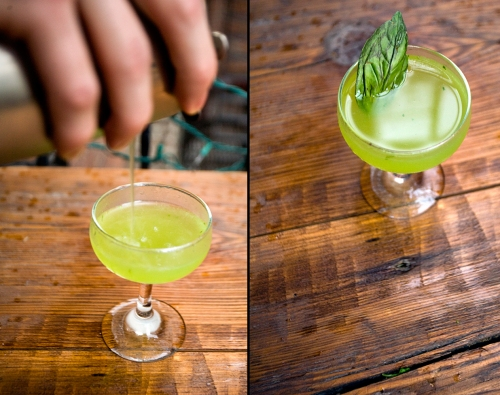 Live Basil Gimlet Cocktail