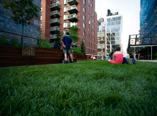 The Grassy Lawn at the High Line, Phase Two