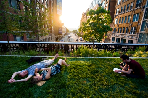 The Grassy Lawn on The High Line, Phase Two